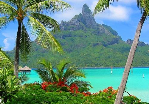 Tussen de palmbomenuitzicht -Favoriete_cruisebestemming__Frans-Polynesie-24