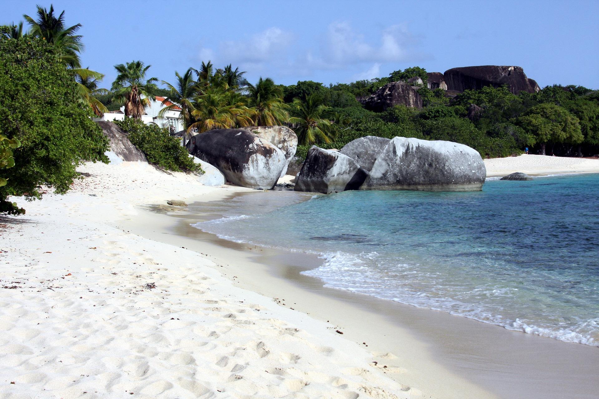 Britse Maagdeneilanden-Strand-Palmbomen