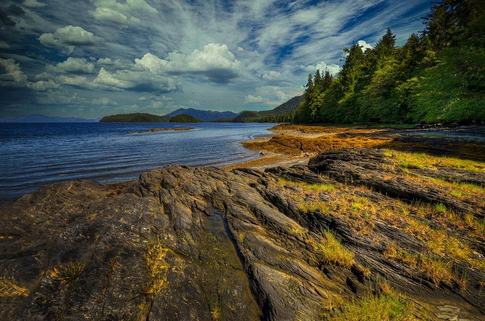 Verenigde-Staten-alaska-ketchikan-bos-meer