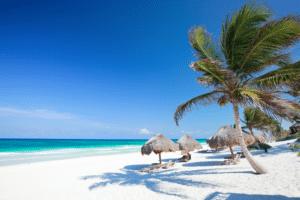 Caribbean-Palmbomen-Strand-Blauwe Zee