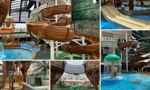 MSC-MSCSeaside-Aquaventureforest-cruise-schip-waterpret